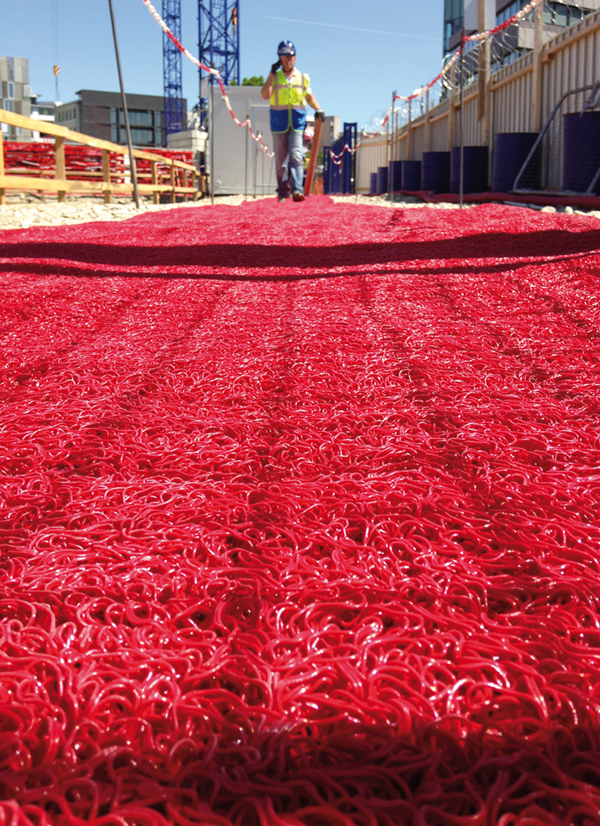tammet-systems-tapis-rouge2